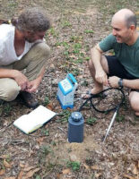 CO2 efflux measurement of ants