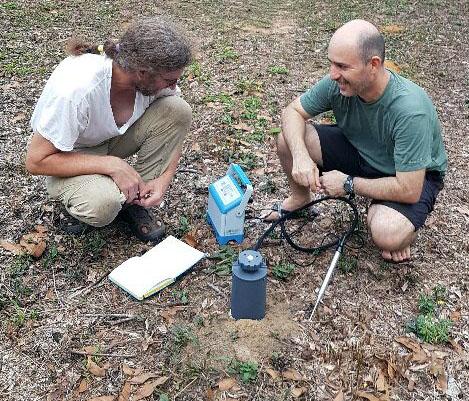 CO2 efflux measurement of ants