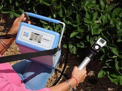 TARGAS-1 Portable Photosynthesis System