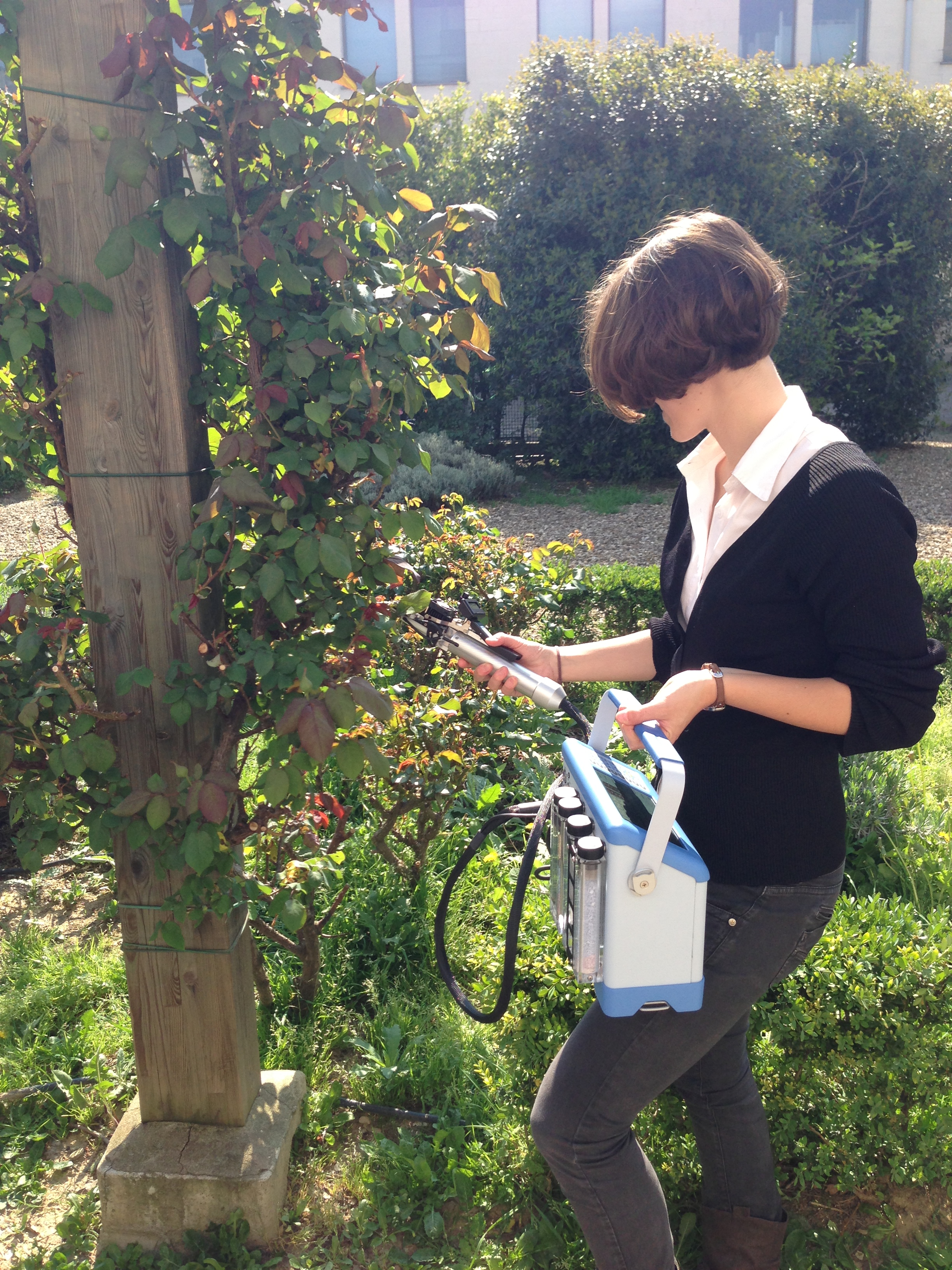 Measurement of photosynthesis in the field with the CIRAS-3 Portable Photosynthesis System