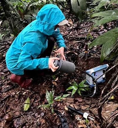 Exploring Soil Carbon Capture Across Ecosystems